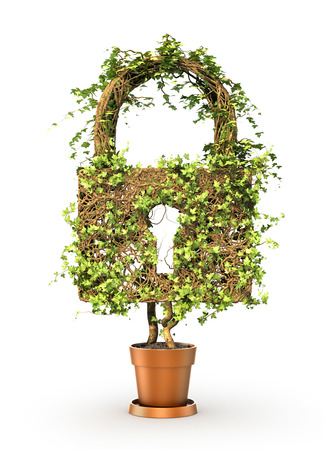 Access  concept. The green plant in form of padlock. 3d illustration Stok Fotoğraf