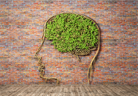 思考の概念。レンガの脳と人間の頭の形で緑の植物の壁背景と木の床。思考が勃発します。3 d イラストレーション