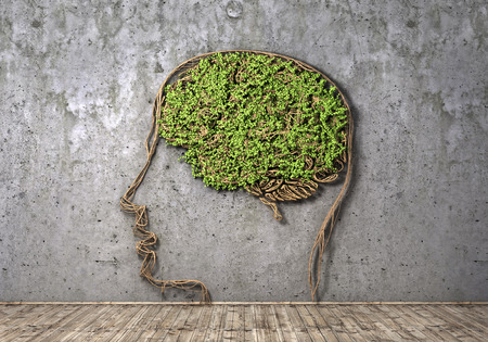 losing brain function: Concept of thinking. The green plant in form of human head with brain on a concrete wall background and wood floor. Thought breaks out. 3d illustration Stock Photo