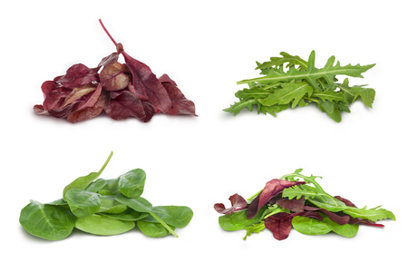 mix salad with arugula spinach salad red on a white background Stock Photo