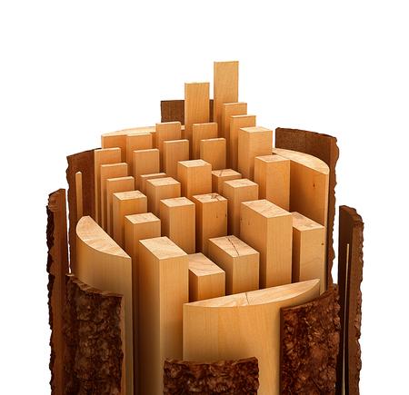 Sliced Lumber from the log. 3d illustration Stock Photo