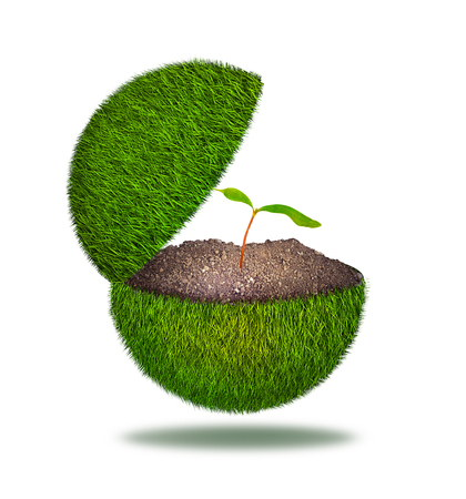 Planet covered with grass cut off halfway with sprout inside isolated on white background