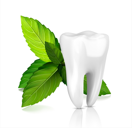 Whitening tooth ads, with mint leaves. Green mint leaves clean fresh concept. Teeth health