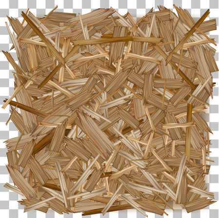 Vector wood. Pressed Wooden Panel (OSB) board.
