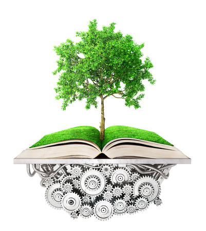 Education concept. Tree of knowledge grows from the book lying on the mechanism. 3d illustration Stock Photo