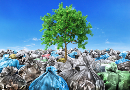 Wedergeboorte concept. Een boom groeit uit een hoop afval. Recyclen. Stockfoto