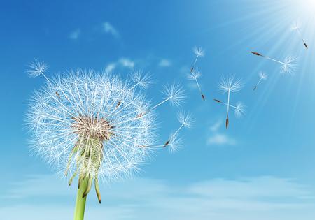 Diente de León de vector con semillas voladoras en cielo nublado