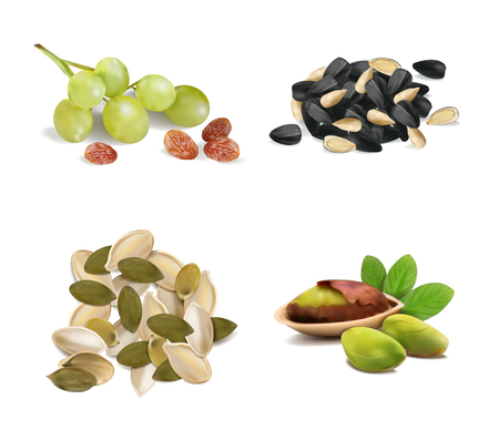 Set of pistachios, seeds, pumpkin seeds, raisins from grapes on a white background. Vector illustration. Banque d'images