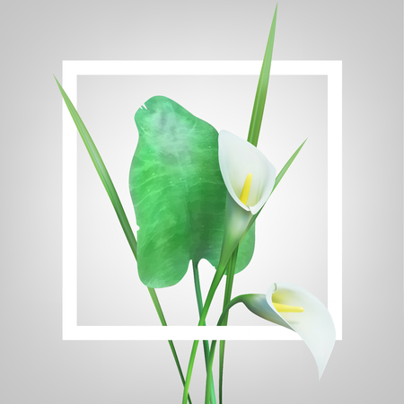 Creative layout made with flowers and frame. Spring minimal concept. Nature background.