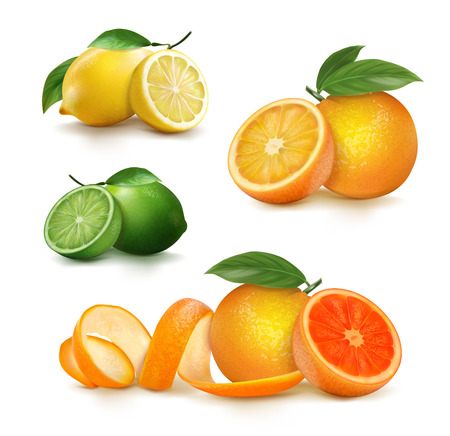 Fresh citrus fruits whole and halves. vector illustration Stock Illustratie