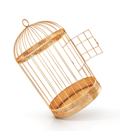 Success concept. Open bird's cell isolation on a white background. 3d illustration