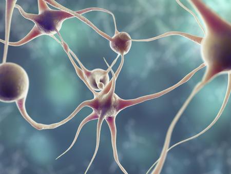 neuron 3d model illustration