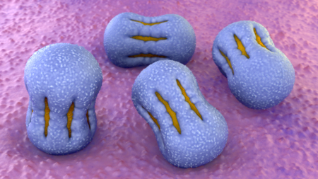 Comfrey pollen 3d illustration
