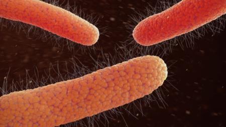 Virus bacteria bacterium 3d illustration