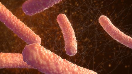 Virus bacteria 3d illustration