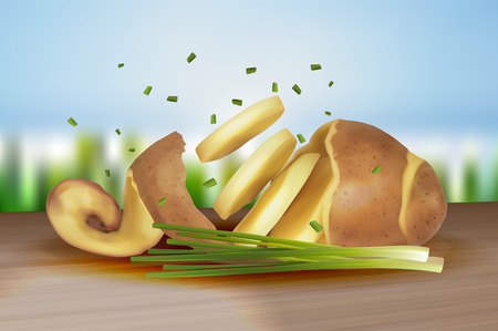 Raw peeled potatoes with twisted skin and fresh green onions. Cut into pieces of vegetables. Vector illustration isolated on bright background.
