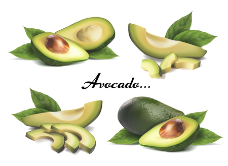 Whole avocado, sliced with leaves. Vector realistic set on a white background. Ilustracja