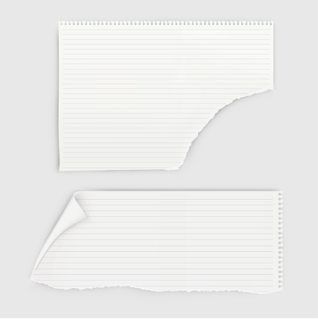 Set of pieces notebook paper with round perforation.