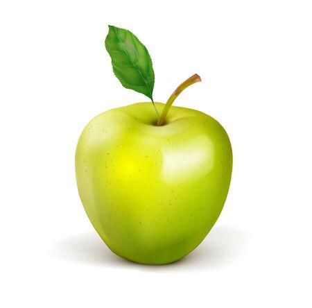 Mela verde. Frutto con una foglia. Illustrazione realistica di vettore isolato su priorità bassa bianca.