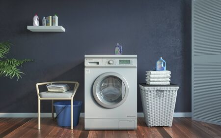 Laundry room, blue wall, plants and basket .3d illustration