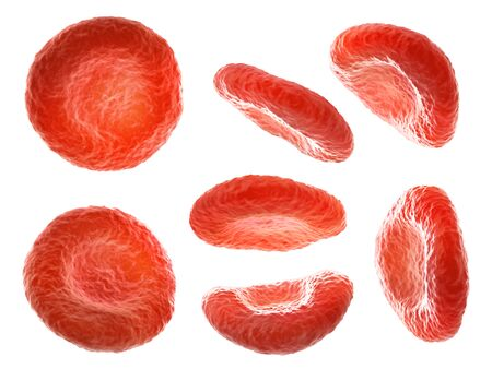 Blood cells in different positions isolated on a white background. 3d illustration
