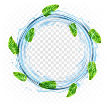 Realistic transparent vector circle splash of water with leaves of  mint.