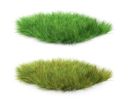 set of yellow grass and green, 3d illustration
