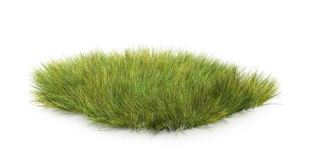 dry grass, 3d illustration