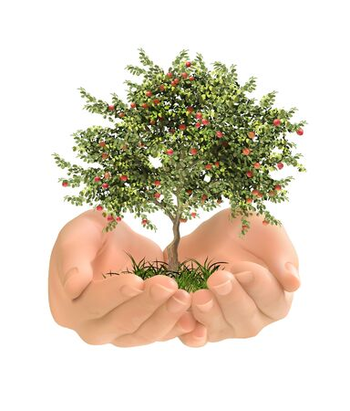 Ecological environment. The tree in the hands. Vector illustration.