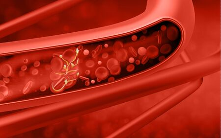 Red blood cells in vein. Vector illustration Illustration