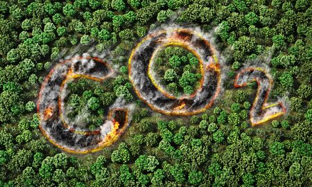 Global warming. Forest fire in form of co2 sign. 3d illustration