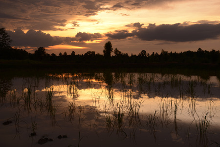 Rice fields and farming in the province Amnat Charoen north-west of Ubon Ratchathani in the northeast of Thailand in South East Asia photo