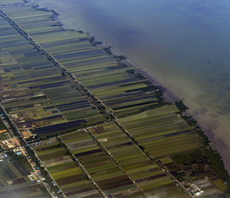 krung: The fish, shrimp and salt farms in Samut Sakhon on Ao Krung Thep in the Gulf of Thailand south of the capital Bangkok of Thailand in South East Asia