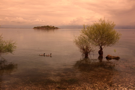 europe eastern: Europe, Eastern Europe, Balkans, Montenegro, Skadar Lake, Landscape, Murici, beach