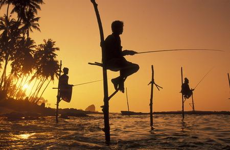 sued: Asien, Indischer Ozean, Sri Lanka, Traditionelle Fischer sogenannte Stelzenfischer beim Fischen in der naehe des Kuestendorf Ahangama an der Suedkueste von Sri Lanka. (URS FLUEELER)