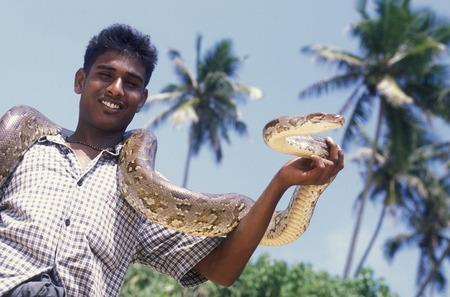 asien: Asien, Indischer Ozean, Sri Lanka, Ein Mann mit einer Schlangeam Strand des Kuestendorf Hikkaduwa an der Suedwestkueste von Sri Lanka. (URS FLUEELER)        Editorial