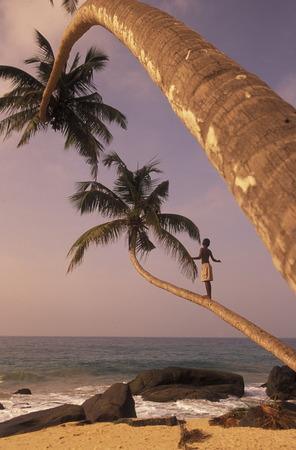 Asien, Indischer Ozean, Sri Lanka, Ein Traumstrand beim Kuestendorf Hikkaduwa ein Suedwestkueste von Sri Lanka der. (URS FLUEELER) Standard-Bild - 29058100