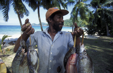 A fisherman on the Iceland of Praslin in the Seychelles archipelago in the Indian Ocean of in Africa