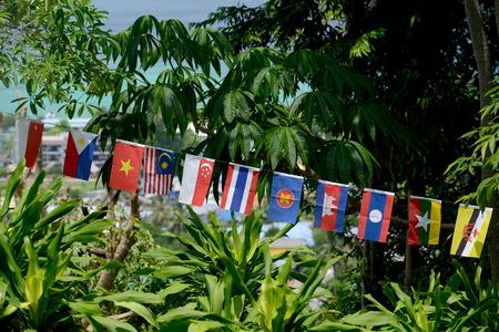 Flags of the ASEAN Nations in the Town of Ko PhiPhi on Ko Phi Phi Island outside of the City of Krabi on the Andaman Sea in the south of Thailand.
