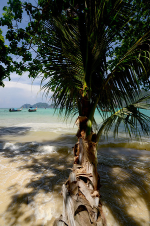 A Beach on the Island of Ko PhiPhi on Ko Phi Phi Island outside of the City of Krabi on the Andaman Sea in the south of Thailand.