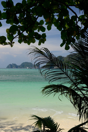 meer: A Beach on the Island of Ko PhiPhi on Ko Phi Phi Island outside of the City of Krabi on the Andaman Sea in the south of Thailand.