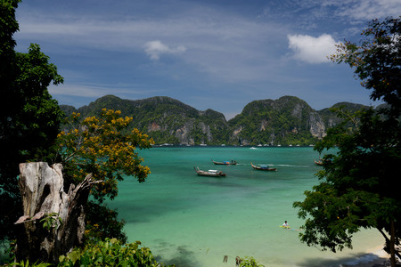 pp: A Beach on the Island of Ko PhiPhi on Ko Phi Phi Island outside of the City of Krabi on the Andaman Sea in the south of Thailand.