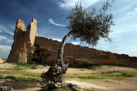 Reisen: The Citywall in the old City in the historical Town of Fes in Morocco in north Africa.