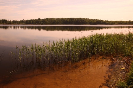 landschaft: a smal lake near the town of Druskininkai in the south of Vilnius and the Baltic State of Lithuania,   Stock Photo