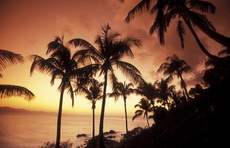 アフリカのインド洋のコモロ土地村モヤは Anjouan の島の海岸の風景です。 写真素材
