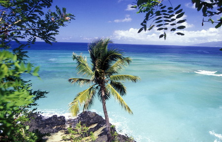 the landscape on the coast of the village Moya on the Island of Anjouan on the Comoros Ilands in the Indian Ocean in Africa.