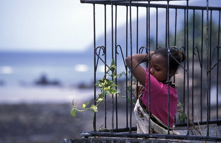 comoros: a women in the city of Moutsamudu on the Iceland of Anjouan on the Comoros in the Indian Ocean Ilands in Africa.