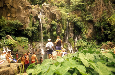 the waterfall and natural parc of La Ravine St Gilles bei St Gilles les Bains on the Island of La Reunion in the Indian Ocean in Africa.