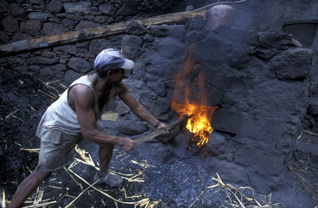 ron: a men makes fire fot to birn Ron near the town of Ribeira Grande on the Iceland of Santo Antao in Cape Berde in the Atlantic Ocean in Africa.