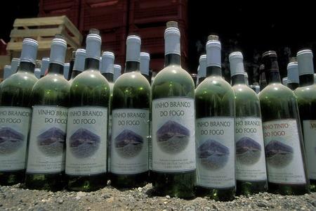 Fogo Wine on the Iceland Fogo Cape Verde on the Atlantic Ocean in in Africa.